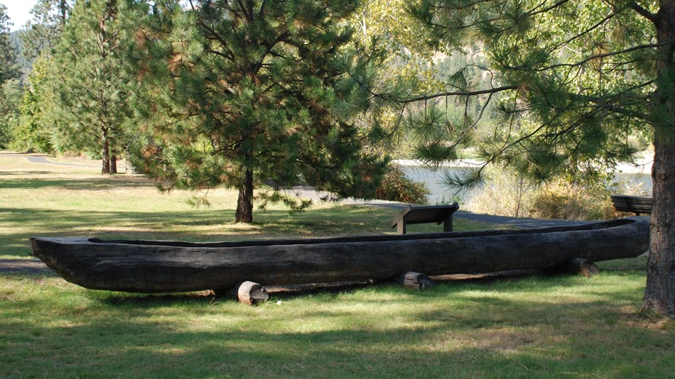 A carved out canoe on the grass with trees surrounding it.