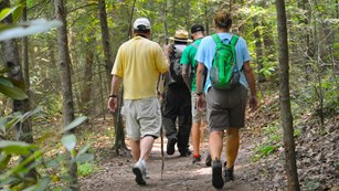 Ranger hiking with visitors on a trail