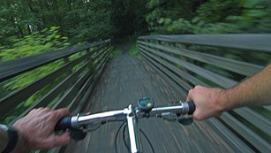 hands gripping the handlebars of a mountain bike on a trail