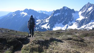 A hiker walks on a trail through a meadow, with mountains in the distance.