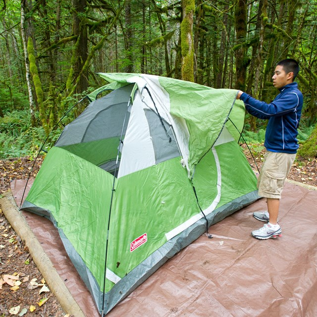 A man sets up a green tent in a campground.
