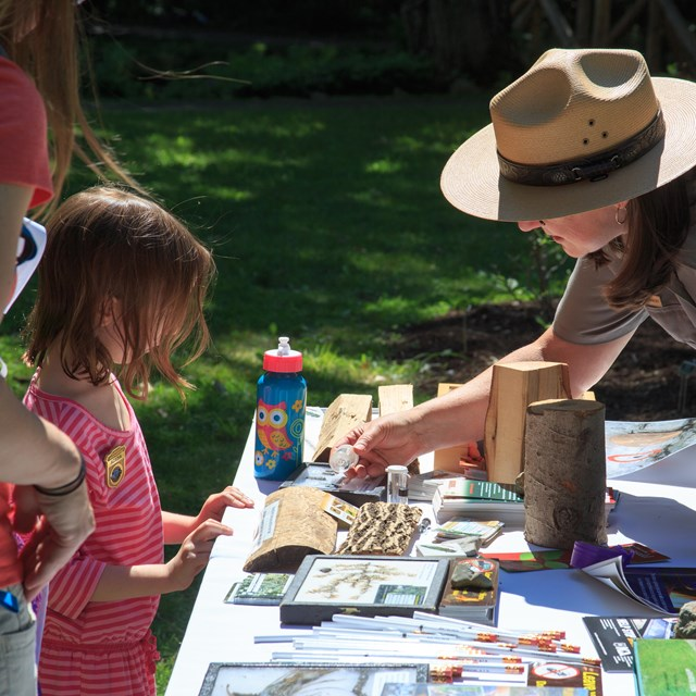 A park ranger shows a young girl an emerald ash borer specimen