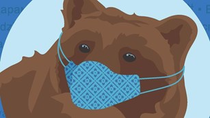 Illustration of a bear wearing a face mask