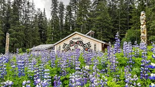 Tribal house in a field with purple flowers