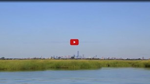 Screenshot of a video still of a large marshland in front of the New York City skyline