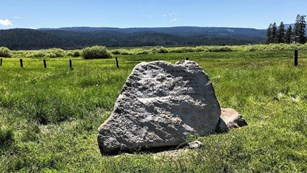 Boulder with inscriptions in a field