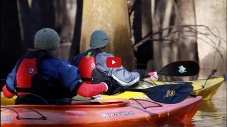 Video screenshot of vets in canoes on a river