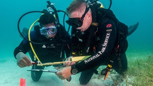 Two underwater divers looking a something with a tape measurer