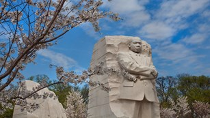Cherry blossom branches in front of a tall statue of Dr. Martin Luther King Jr.