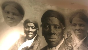Collage of Harriet Tubman photos and illustration