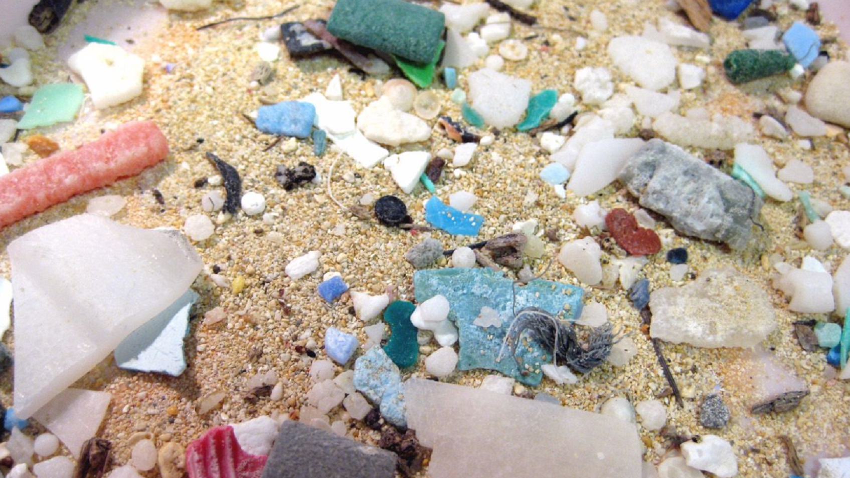 Micro plastics found in the ocean.