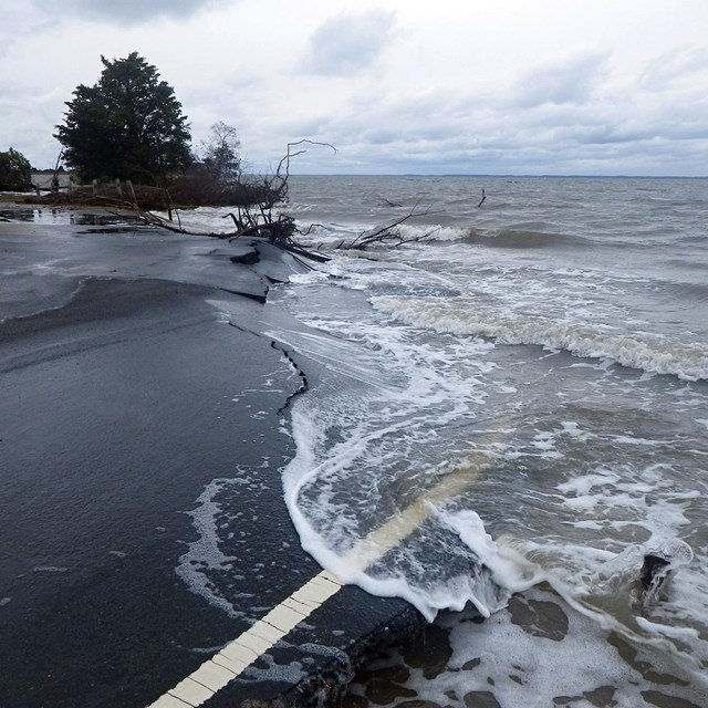 ocean water surging over asphalt with trees in the background