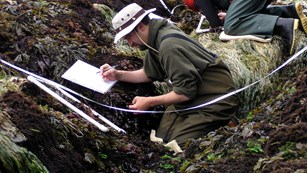 Two researchers use equipment to measure tide pools.