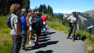 Ranger leading a walk and talk at Hurricane Ridge.
