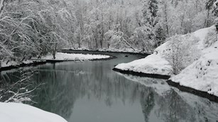 Snow shrouds the shores of the Elwha River in winter.