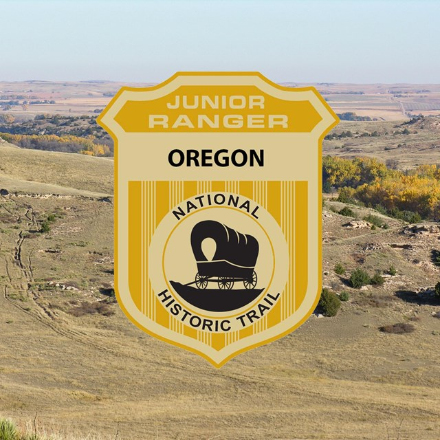 A junior ranger badge image on top of a grass covered, hill-covered landscape.