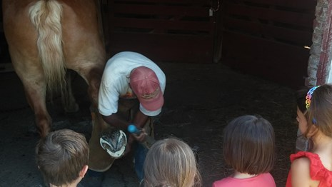 Children watch as the farrier cleans a horse's hooves