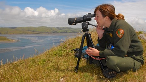 National Park Service Biologist surveying the harbor seal population at Point Reyes NS