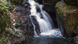 Water flows down waterfall at Mount Tam.