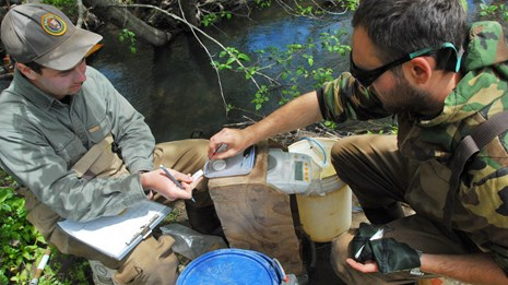 Two people collect data on coho salmon smolts beside a creek
