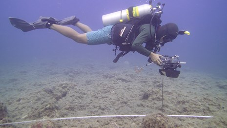 PACN I&M staff performs monitoring of marine benthic vital signs