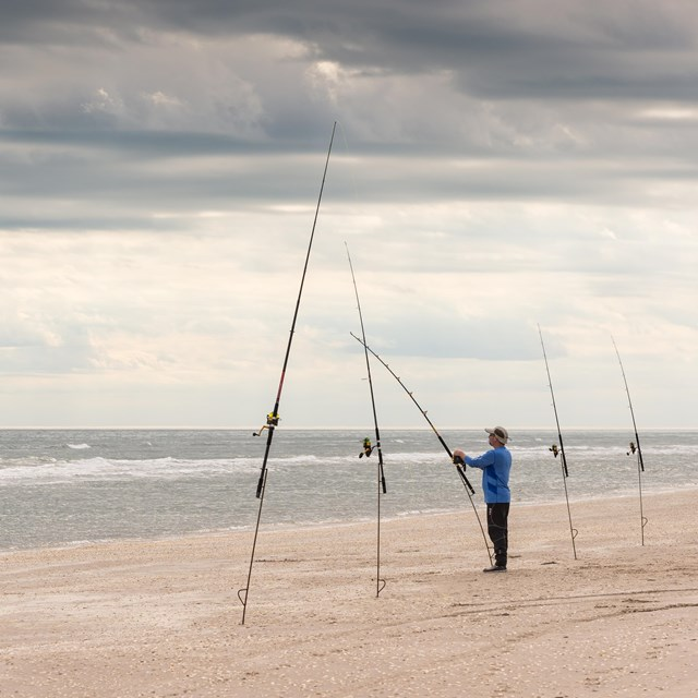 A man stands at one of several fishing poles stuck in the sand near the water on an overcast day.