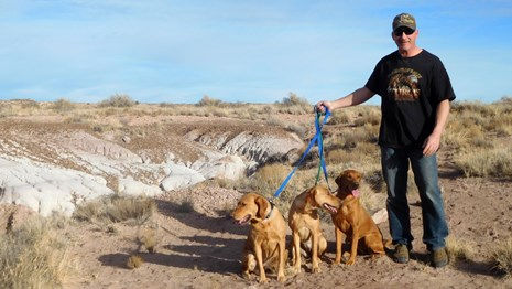 Man hiking with his dogs in the backcountry.