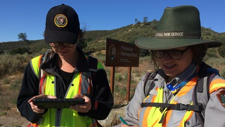 A National Park Service plant biologist and intern record data during an invasive plant survey.