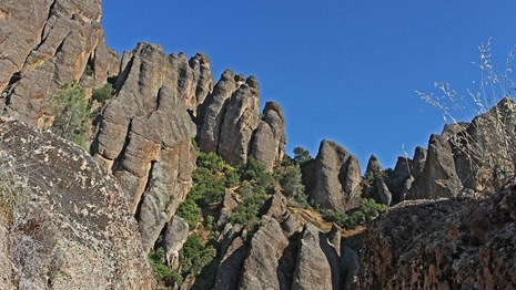 Vertical rock formations of Pinnacles set against a clear blue sky.