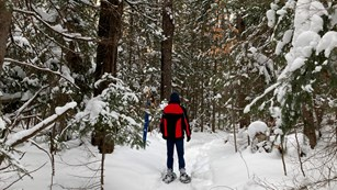 Snowshoeing on the Munising Snowshoe Trail.