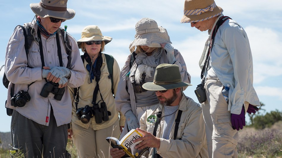 five senior birders studying a field guide