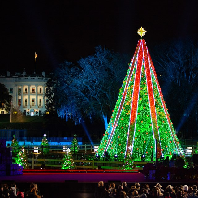 Decorated Christmas tree in front of the White House