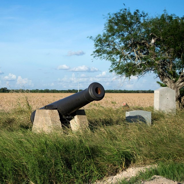 Historical marker and cannon at edge of grassland