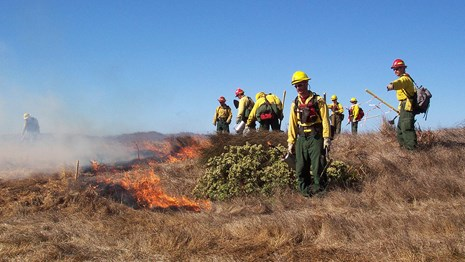 Eight people dressed in yellow shirts, green pants, and hard hats start a prescribed fire.