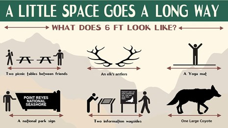 Infographic entitled A Little Space Goes a Long Way. What does 6 feet look like?