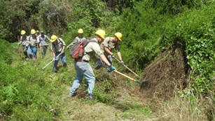 Youth Conservation Corps members performing trail maintenance.
