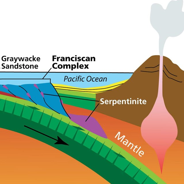 Graphic cross-section of mantle and sea floor subducting under the Pacific Coast