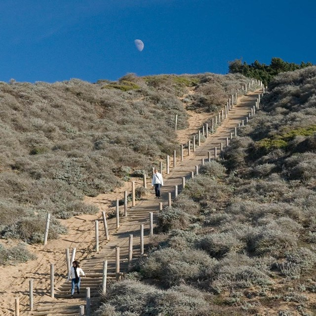 people walk down sandy stairs at waning, moon rise