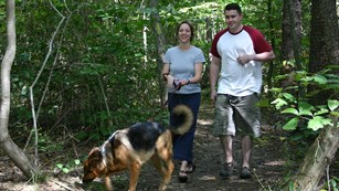 A man and a woman with a German shepherd hike a trail in summer