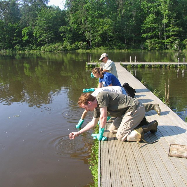 Three people on a dock doing water tests