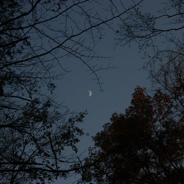 A dark winter sky with a bright crescent moon