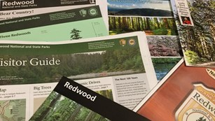 Park brochures will help with your visit.