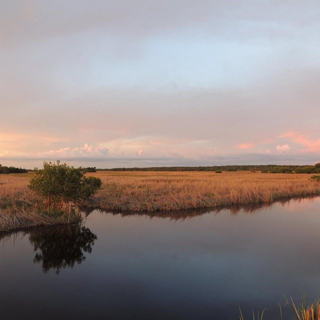 Sunset over the preserve, Big Cypress National Preserve, 2015.