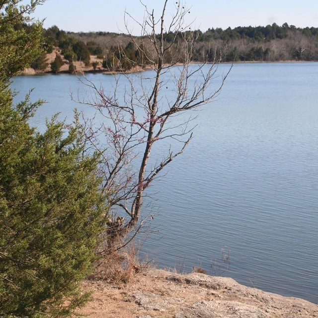 Veteran's Lake in the early spring.