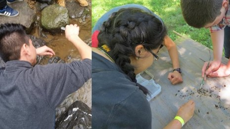 Students conducting experiments in Rock Creek