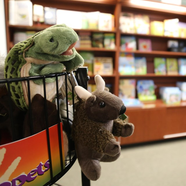 An image of finger puppets in our bookstore.