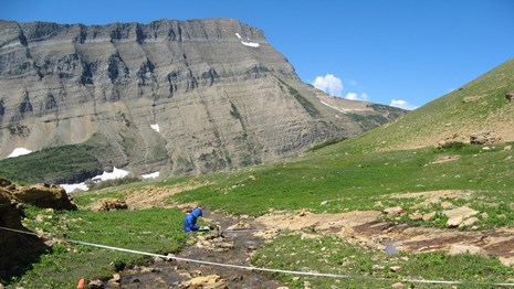 Wetland monitoring in Glacier National Park