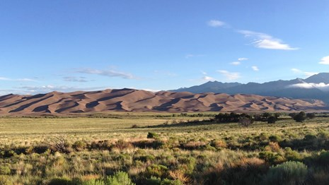 View of the dunes in Great Sand Dunes National Park.