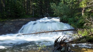 Waterfalls and cascades can be found in the forests or running down rocky cliff faces.