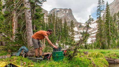 Learn how scientists see RMNP as a living laboratory that reveals elevation secrets.